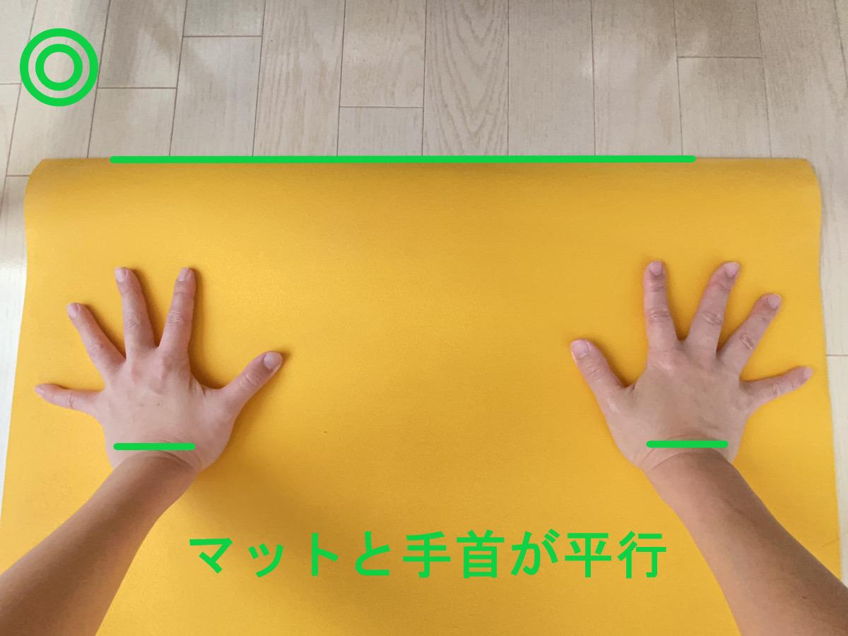 下向きの犬のポーズの正しい手の付き方